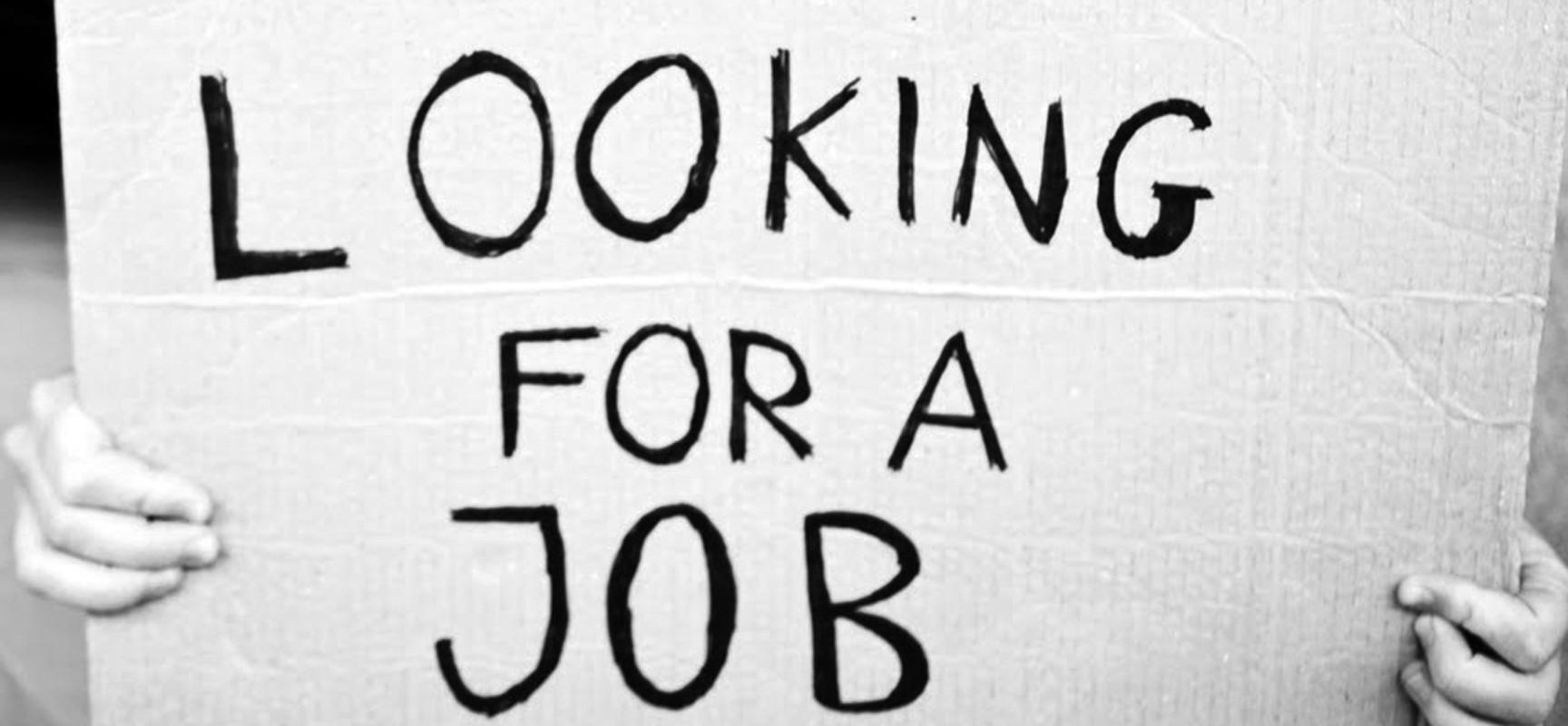 Dalla Traduzione del CV al Career Counseling: come Trovare Lavoro nel Nuovo Millennio